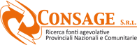 Consage Srl Logo